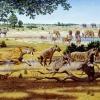 10 kihalt állat - nagymacskák