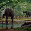 10 kihalt állat - ormányosok