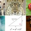 16 csodálatos dolog, amit nem mutatnak meg az iskolában