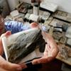 419 millió éves őslény-fosszíliát találtak