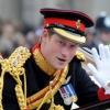 A katonaságtól is megrovást kaphat Harry herceg