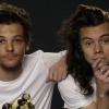 A Larry shipperek tönkretették Louis Tomlinson és Harry Styles barátságát