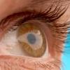 A szemgolyónyaldosás az új őrület — videó