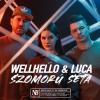 Ha még nem hallottad a Wellhello új dalát, ideje pótolni!