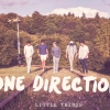 Dalpremier: One Direction — Little Things