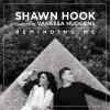 Dalpremier: Shawn Hook ft. Vanessa Hudgens – Reminding Me