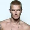 David Beckhamet lovaggá ütik