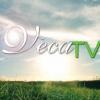 Elindult a Veca TV!