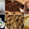 Így néznek ki ételeink a mikroszkóp alatt