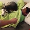 Elképesztő! Nem hiszed el, mit csinál ez a kutya, amikor a gazdijának fel kell ébrednie reggel
