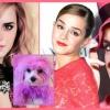 Emma Watson rózsaszín kutyával nyomul