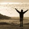 7 film, amitől megjön a kedved az utazáshoz