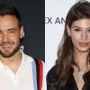 Furcsa hasonlóság Cheryl és Liam Instagram-oldalán: az énekes modellel lépett tovább