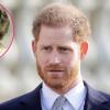"""Harry herceg: """"Édesanyám, Diana halála örökké megsebzett"""""""