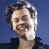 Harry Styles biszexuális? Új dala árulkodó