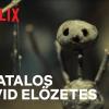 Hátborzongató pszichothriller-sorozat érkezik a Netflixre