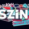 Hétfőn veszi kezdetét a SZIN Fesztivál
