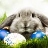Így húsvétoltak a sztárok
