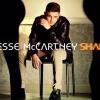Megjelent Jesse McCartney Shake című klipje