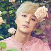 K-Pop visszatérés: Roy Kim