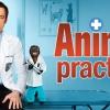 Kaszát kapott az Animal Practice
