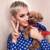 Katy Perry vegán lett..., a kutyájával együtt!