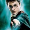 Két fontos Harry Potter-karakterről neveztek el egy új rákfajt