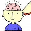Kilenc dolog, ami intelligenssé tehet