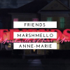 Klippremier! Marshmello & Anne-Marie: Friends
