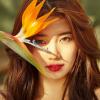 #KPOP: A szerelem arcai – visszatért Suzy