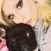 Megdöbbentő! Ellopták Lady Gaga két kutyáját: meglőtték a kutyasétáltatóját fényes nappal!