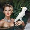 Meztelenül pózolt Jennifer Lawrence