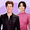 Mikulásnapi meglepetés: Közös karácsonyi dalt készített Shawn Mendes és Camila Cabello