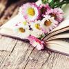 Nagy tavaszi könyvajánló
