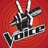 Ők a magyar The Voice mesterei!