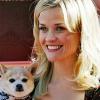 Pajtát építtet Reese Witherspoon