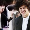 Rajzfilmfigurát inspirált Harry Styles