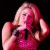 Shakira nyulakat vett