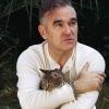 Szünetelteti karrierjét Morrissey?