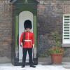 Táncoslábú gárdista szórakoztatja a turistákat Londonban