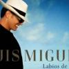 Új dallal jelentkezik Luis Miguel