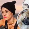 Új kutyája van Miley Cyrusnak