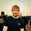 Újabb baleset: most Ed Sheeran cicája volt az áldozat