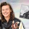 Újabb Harry Styles-hasonmást találtak egy második világháborús pilóta személyében