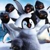 Újra táncra perdülnek a pingvinek!