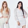 Újracsomagolt minialbummal jelentkezett a Nine Muses