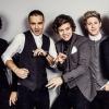 Valóságshow-t kap a One Direction?