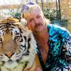 Végre megérkezett a Tigrisvilág 2. előzetese
