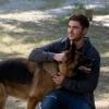 Zac Efron imád kutyákkal forgatni