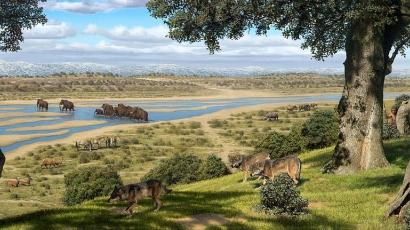 10 kihalt állat - kutyaalkatúak